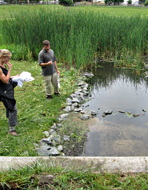 Assessing Stormwater Pond retrofit options to maximize water quality treatment