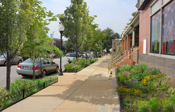 Photosimulation of stormwater tree pits and a rain garden on Belair Road