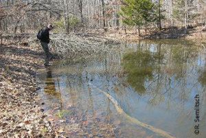 Bill Peterman&pond at FLW-R. Semlitsch credit-