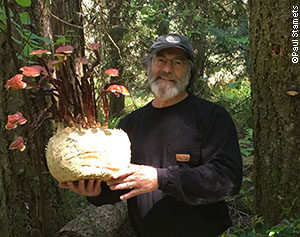 Paul Stamets with avariant of the Reishi mushroom (Ganoderma lucidum s.l.)
