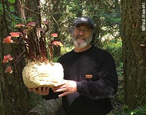 Paul Stamets with a variant of the Reishi mushroom (Ganoderma lucidum s.l.)