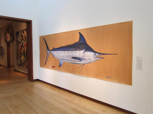 Blue Marlin ©James Prosek