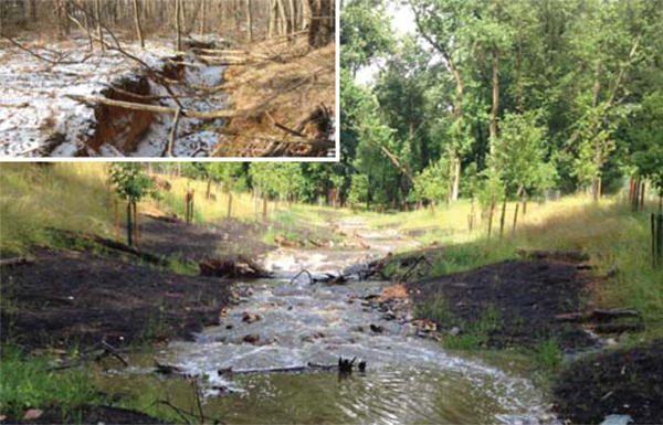 Restored stream immediately after planting with inset of severely eroded initial conditions