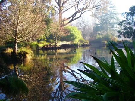 Christchurch Botanic Gardens © Jennifer Dowdell