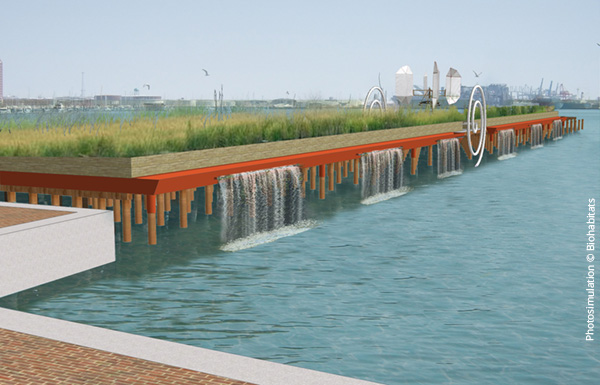 Concept for living infrastructure–a repurposed pier that filters and cleans water, enhances dissolved oxygen, and creates aquatic habitat