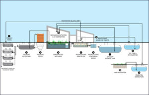 Cross section of natural wastewater treatment/reuse system