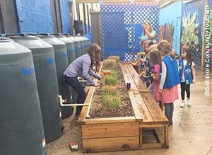 "Daisy troop visits ""stormwater factory"""