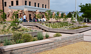 16,000-gallon rainwater harvesting system captures rooftop rainwater for reuse, reducing potable water use by more than 75% at federal courthouse in Albuquerque, NM