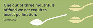 Fact_mouthfuls
