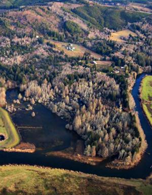 Fee-Simon tidal wetland restoration site