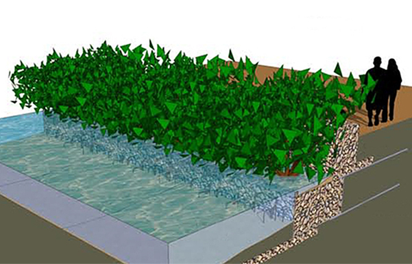 Gabion design for estuary