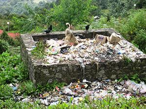 Dog in town garbage pit, Gasa, Bhutan, 2008 ©Elizabeth Allison