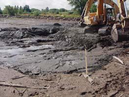 Hog Island sediment