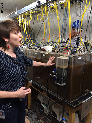 Haydee DeClippeleir of DC Water explains to LIFT participants research being conducted on a new technology which uses a recently discovered bacteria to remove nitrogen from wastewater with significantly less energy and chamicals. Haydee leads a team of about 20 students conducting research at the DC Water facility