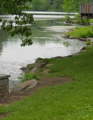Initial conditions within Van Cortlandt Park