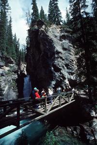 Johnston Creek Canyon © Parks Canada, Lynch, W.