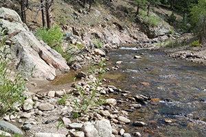 Lefthand Creek in Colorado's Front Range