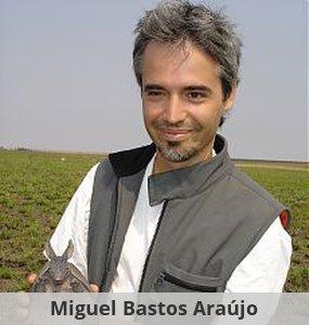 Miguel Bastos Araujo