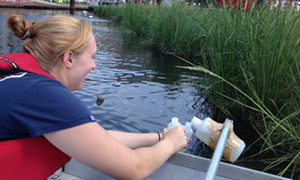 Monitoring water quality at Baltimore's floating wetlands