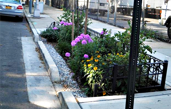 Right-of-way bioswale
