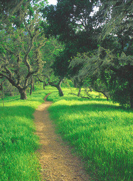 ©The Land Trust of Napa County