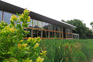 Constructed wetland, Omega Center for Sustainable Living