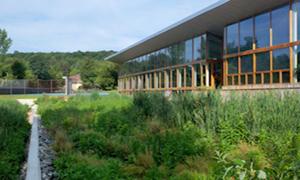 Biohabitats & JTED hybridized natural treatment technologies, maximizing energy efficiency & ecological diversity