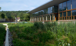Constructed wetlands, Omega Center for Sustainable Living (Living Building Challenge™ certified)