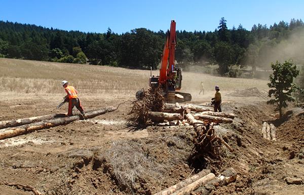 Installing large woody debris