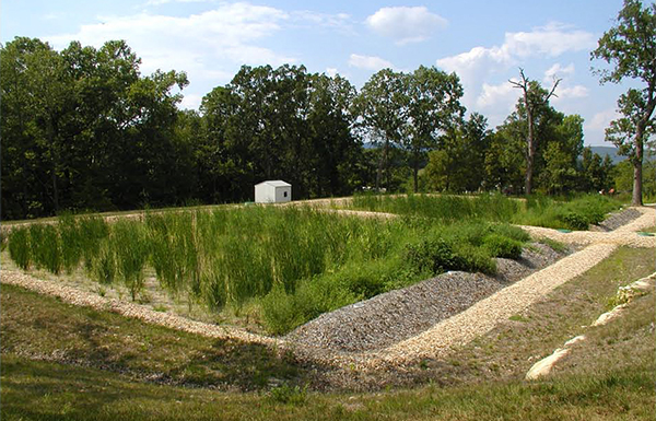 Onsite wastewater treatment wetland system