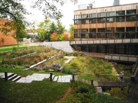 landscape architecture case study examples biomimicry biomimicry leaf litter newsletter biohabitats inc