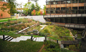 Constructed wetlands, Sidwell Friends School
