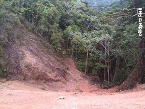 Steep, eroded slope in the Guánica watershed, pre-stabilization