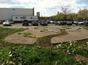 Reintegrating urban ecology: dendridic decay garden at former urban industrial site