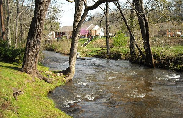 Cullowhee Creek