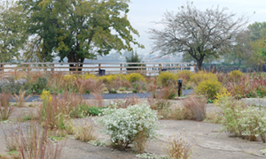 Concrete parking lot transformed into riverfront park that regenerates economic vitality, community well-being, and ecological processes in Philadelphia, PA