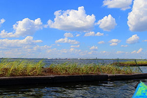 A kayak's eye view of the wave attenuator in Jamaica Bay