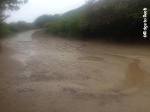 Zoni Beach, Culebra, PR pre-stabilization/restoration