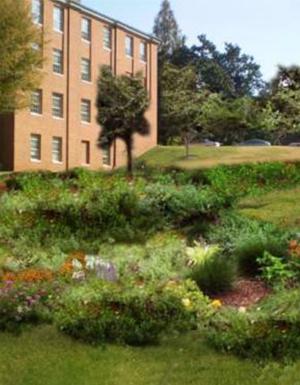 Photosimulation of proposed bioretention area