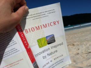 book on beach