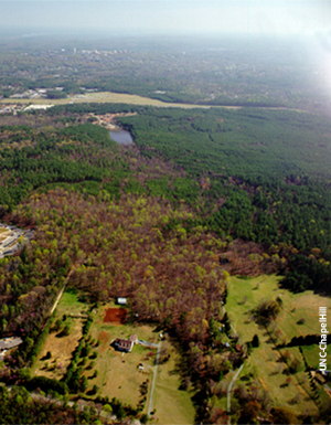 Continuous woodlands provide important habitat within the Carolina North property